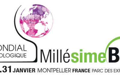 Millesime Bio 2018, the organic wine show is back in Montpellier